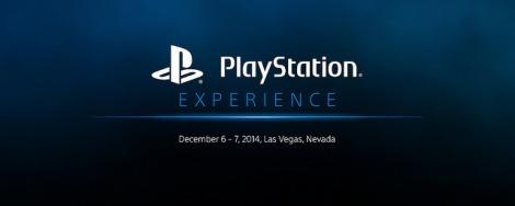 10232014_PlaystationExperience